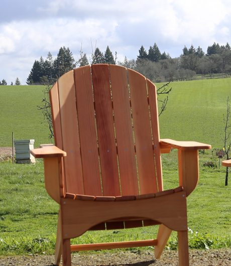 Single Adirondack Chair