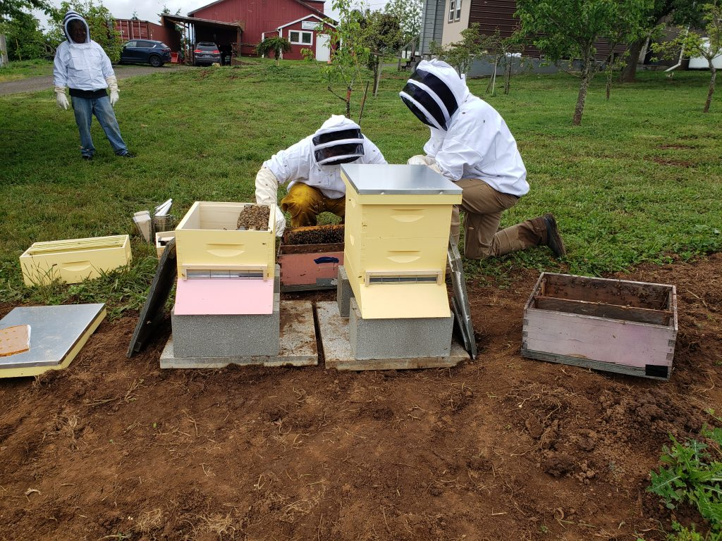 Katy Fackler teaches the residents of Blanchet Farm how to install the bees in the new hives.