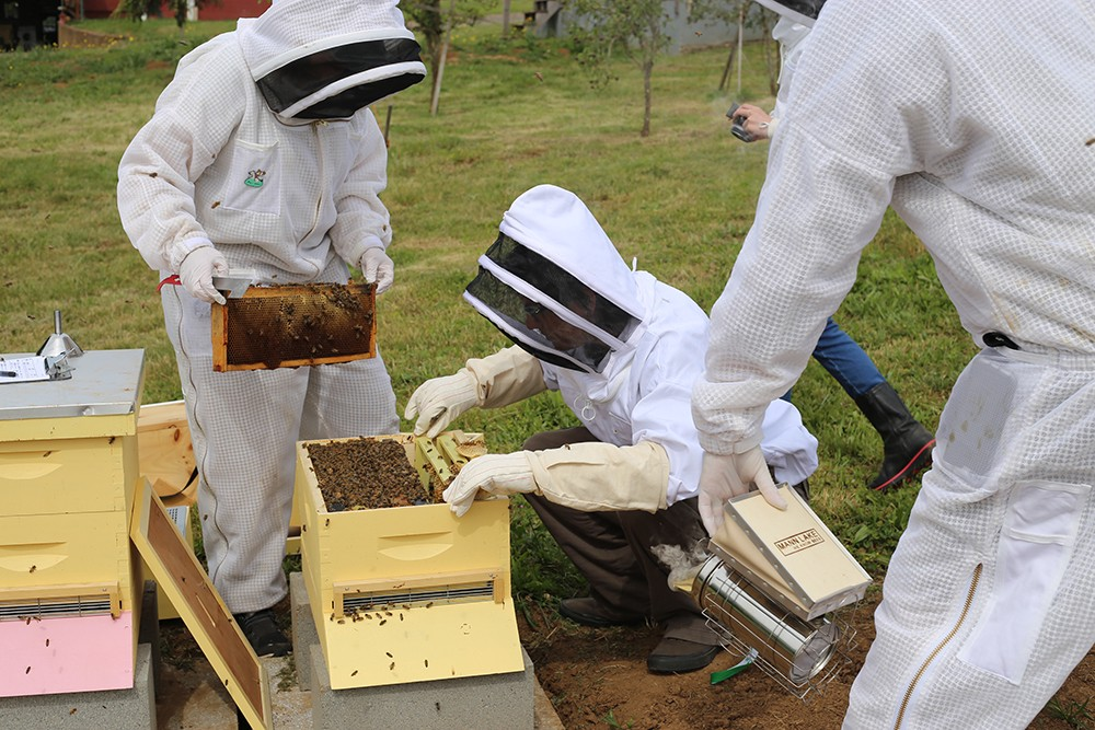 Beekeeping lessons at Blanchet Farm in Carlton, Oregon. Photo by Julie Showers.
