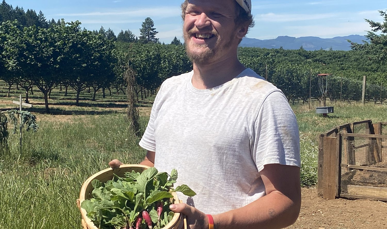 Harvesting radishes at Blanchet Farm. Gardening benefits people in addiction recovery.